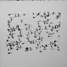 02transformation-set-flock